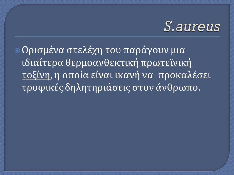 S.aureus