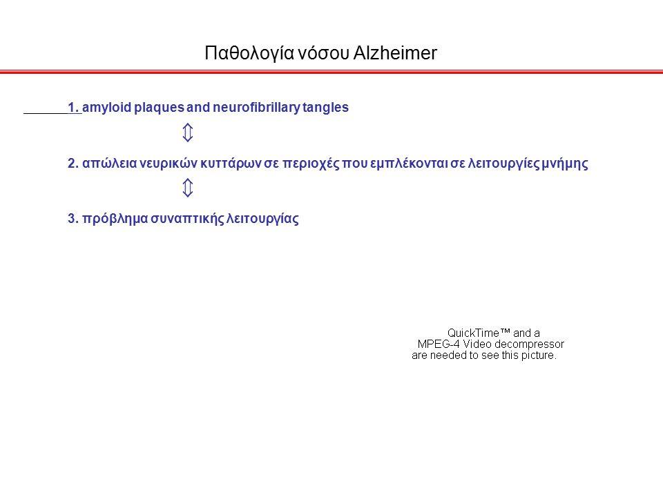 Παθολογία νόσου Alzheimer