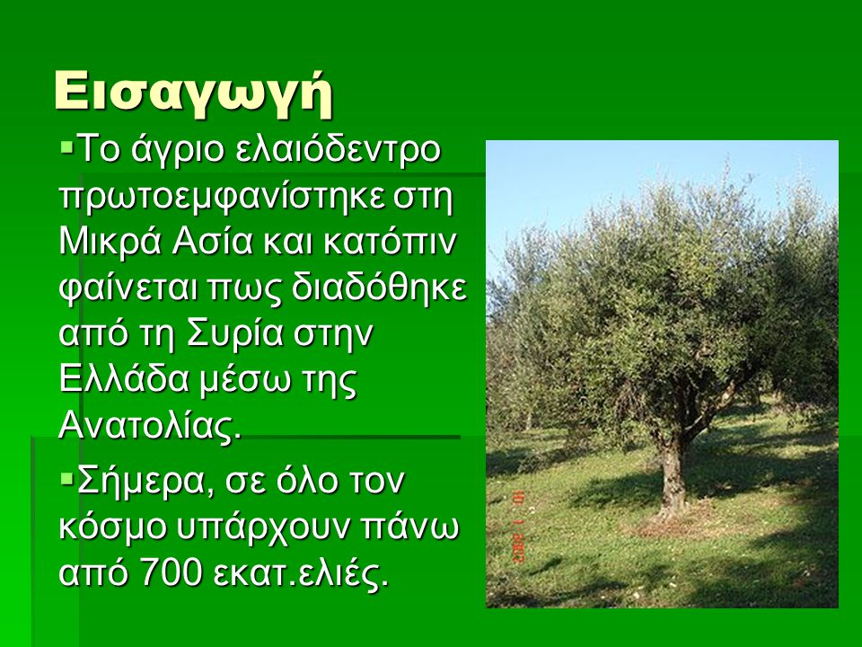 Εισαγωγή Το άγριο ελαιόδεντρο πρωτοεμφανίστηκε στη Μικρά Ασία και κατόπιν φαίνεται πως διαδόθηκε από τη Συρία στην Ελλάδα μέσω της Ανατολίας.