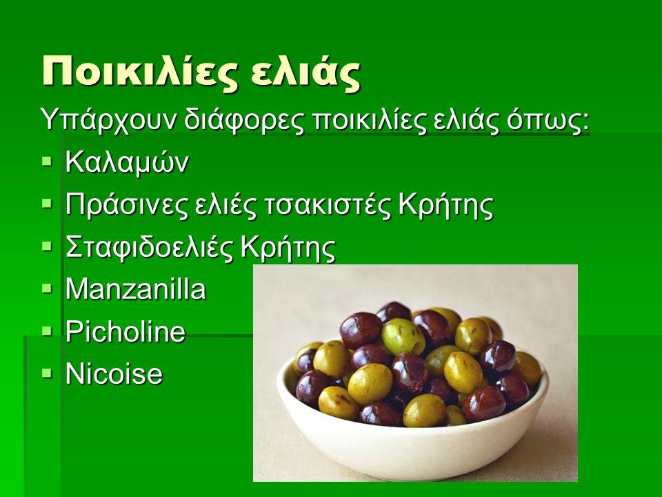 Ποικιλίες ελιάς Υπάρχουν διάφορες ποικιλίες ελιάς όπως: Καλαμών