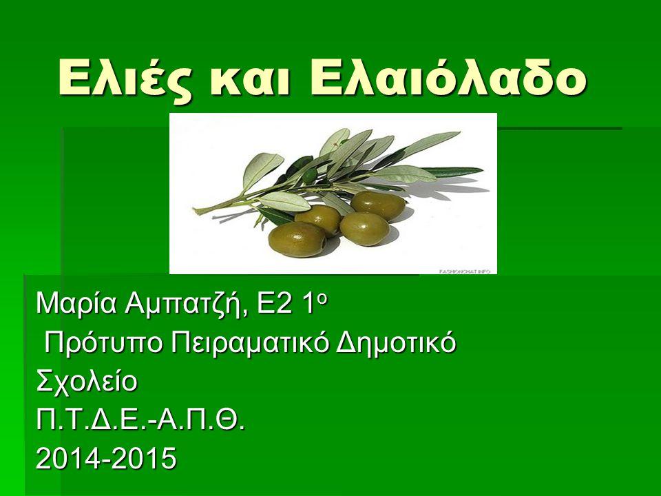 Ελιές και Ελαιόλαδο Μαρία Αμπατζή, Ε2 1ο Πρότυπο Πειραματικό Δημοτικό