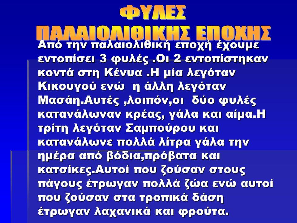 ΦΥΛΕΣ ΠΑΛΑΙΟΛΙΘΙΚΗΣ ΕΠΟΧΗΣ