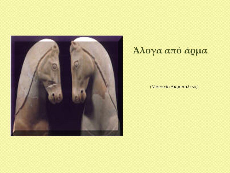Άλογα από άρμα (Μουσείο Ακροπόλεως)