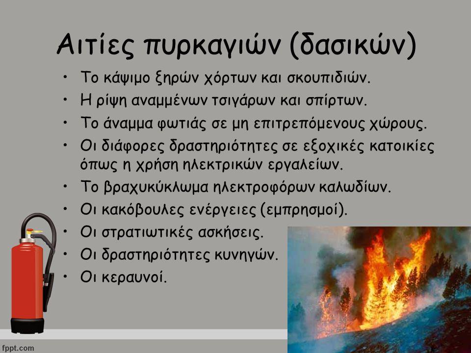 Αιτίες πυρκαγιών (δασικών)