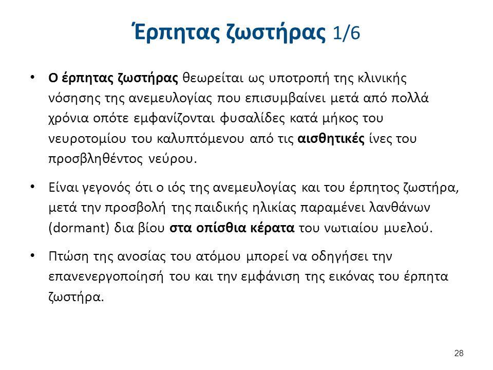 Έρπητας ζωστήρας 2/6