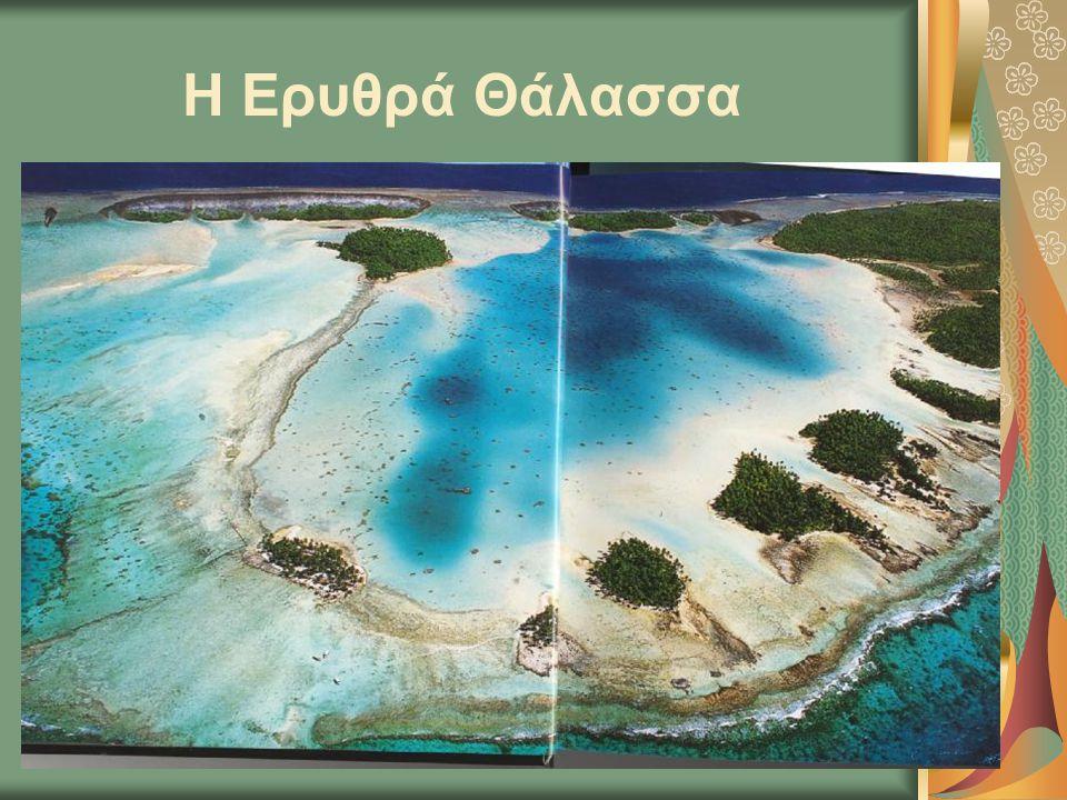 Η Ερυθρά Θάλασσα