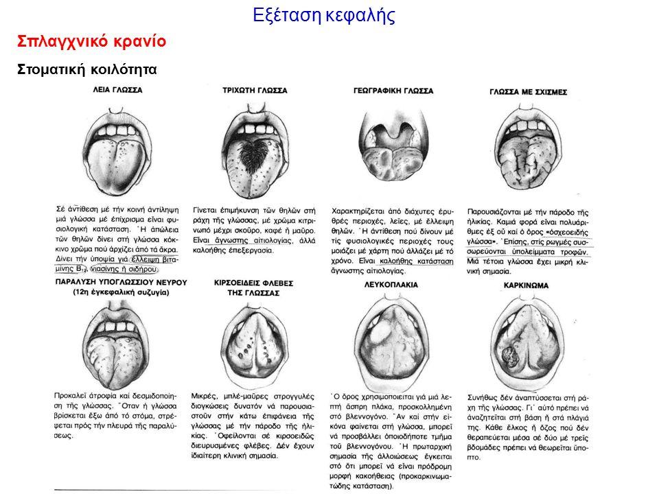 Εξέταση κεφαλής Σπλαγχνικό κρανίο Στοματική κοιλότητα