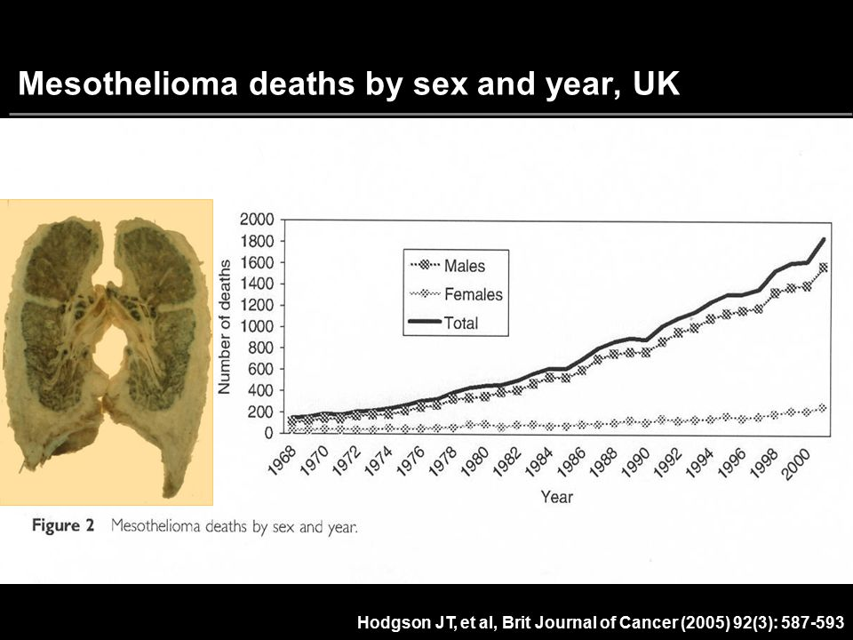 Mesothelioma deaths by sex and year, UK
