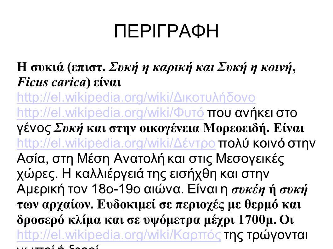 ΠΕΡΙΓΡΑΦΗ