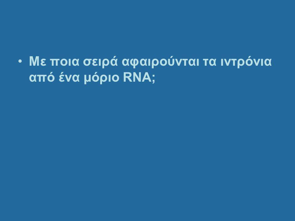 Με ποια σειρά αφαιρούνται τα ιντρόνια από ένα μόριο RNA;