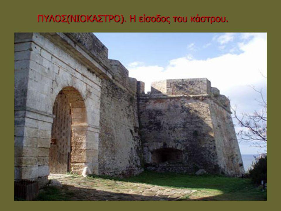 ΠΥΛΟΣ(ΝΙΟΚΑΣΤΡΟ). Η είσοδος του κάστρου.