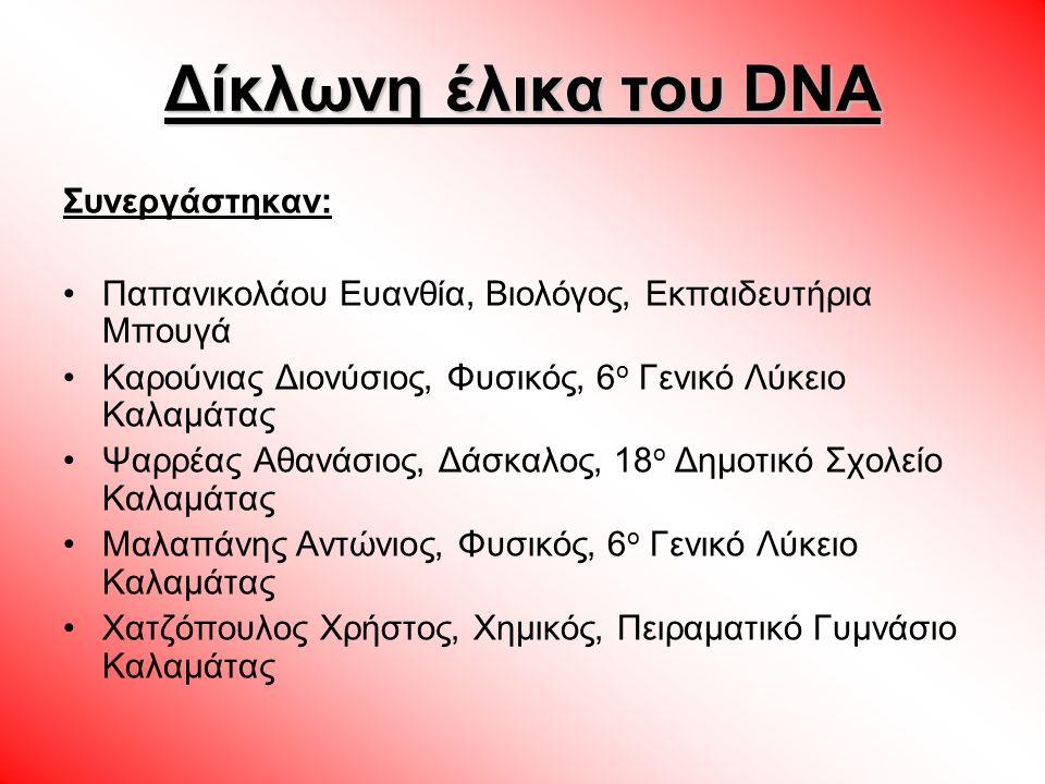 Δίκλωνη έλικα του DNA Συνεργάστηκαν: