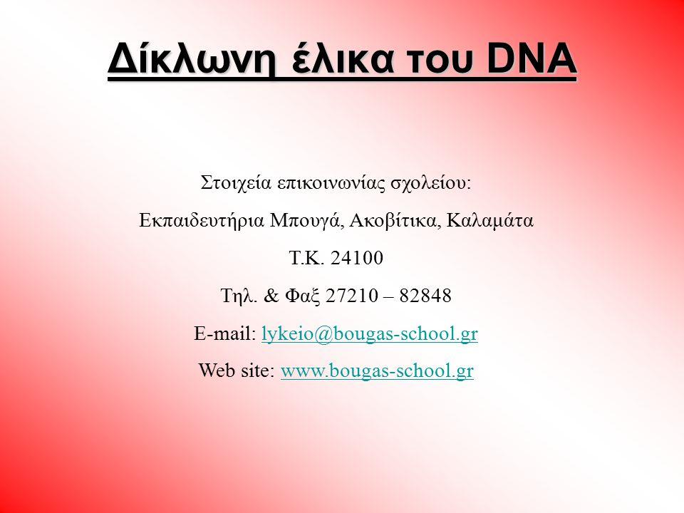 Δίκλωνη έλικα του DNA Στοιχεία επικοινωνίας σχολείου: