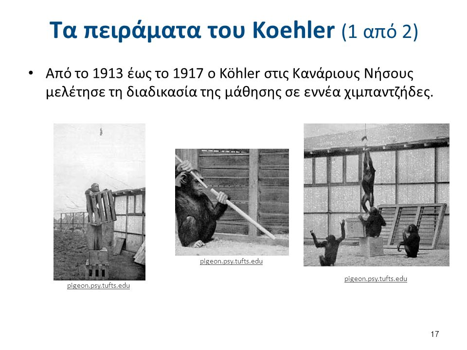 Τα πειράματα του Koehler (2 από 2)