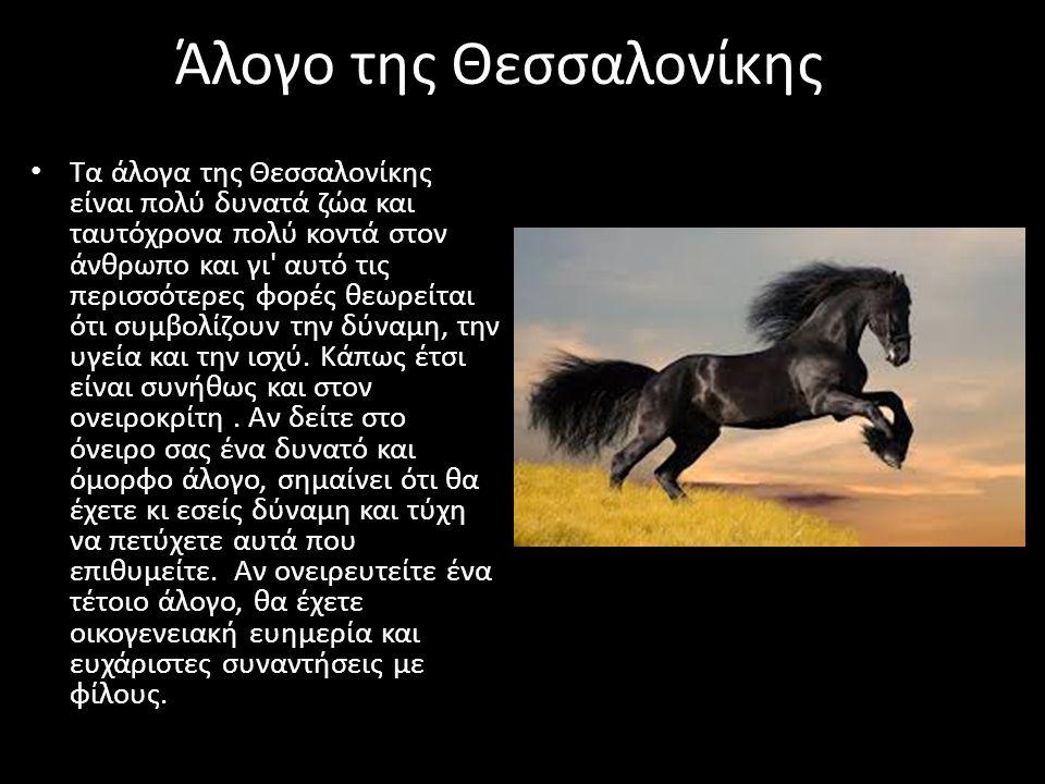 Άλογο της Θεσσαλονίκης