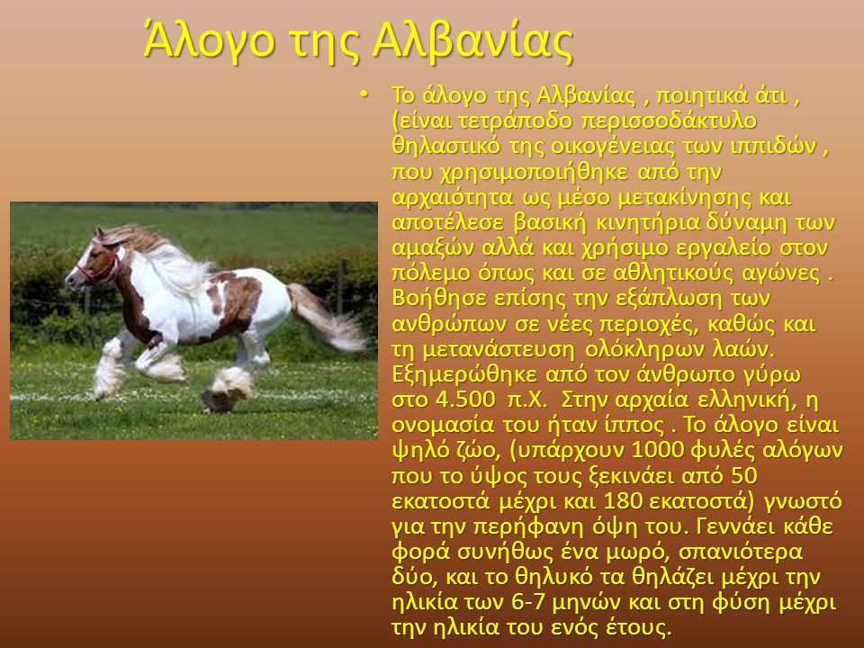 Άλογο της Αλβανίας