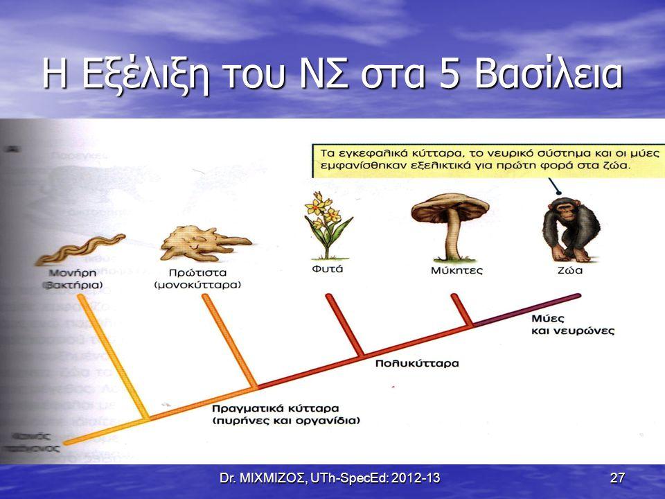 Η Εξέλιξη του ΝΣ στα 5 Βασίλεια
