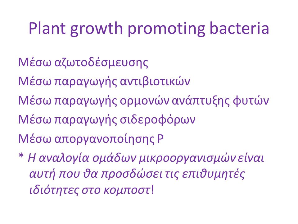 Plant growth promoting bacteria