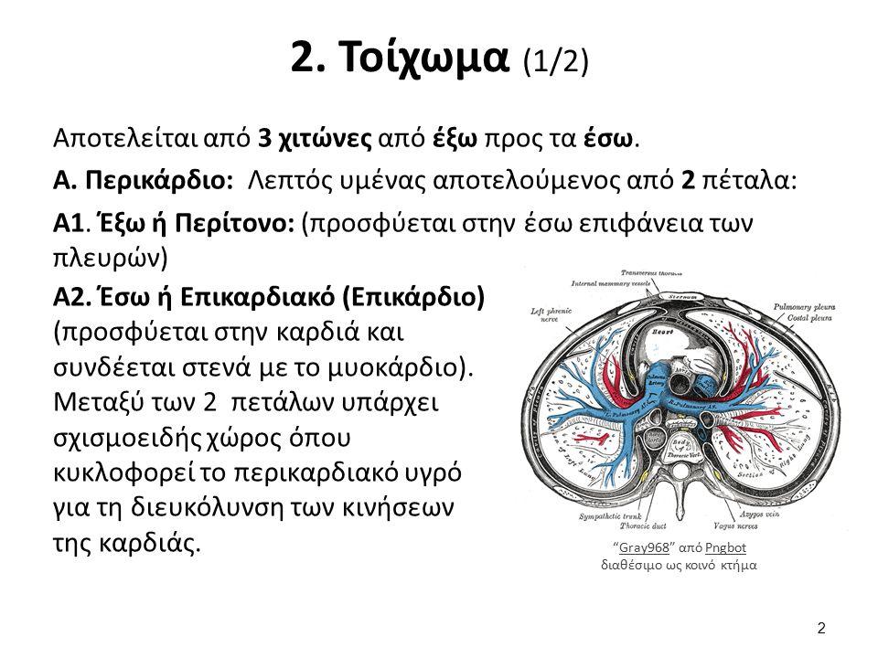 2. Τοίχωμα (2/2)