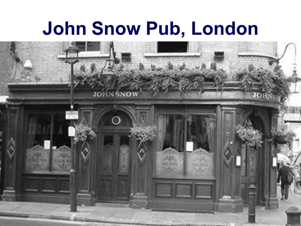 John Snow Pub, London