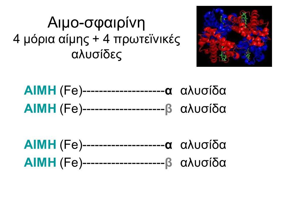 Αιμο-σφαιρίνη 4 μόρια αίμης + 4 πρωτεϊνικές αλυσίδες