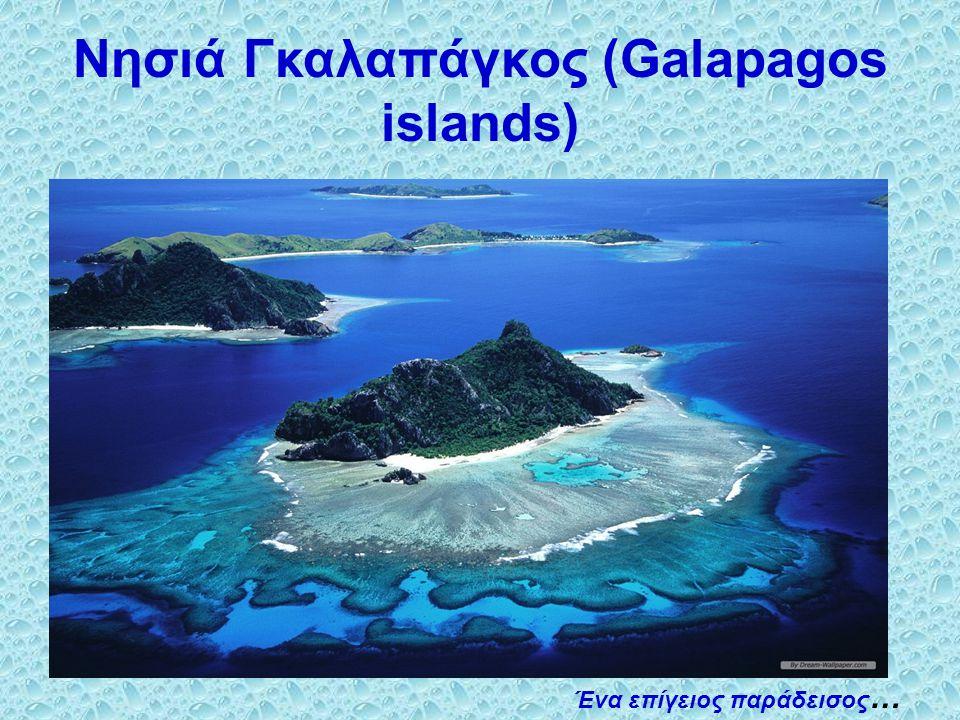 Νησιά Γκαλαπάγκος (Galapagos islands)