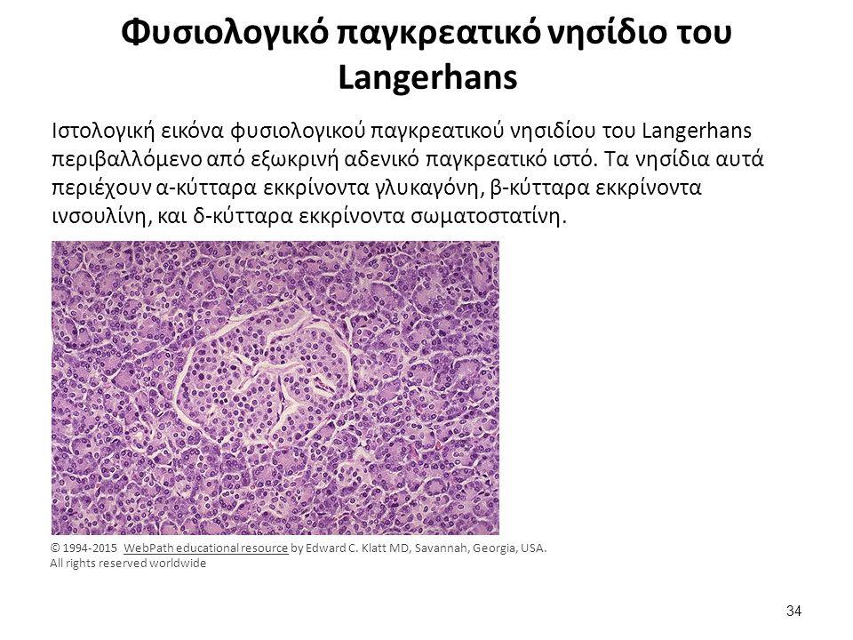 Χρώση ανοσοϋπεροξειδάσης για τη διάγνωση των κυττάρων των νησιδίων του Langerhans