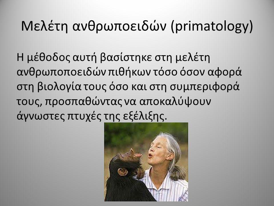 Μελέτη ανθρωποειδών (primatology)