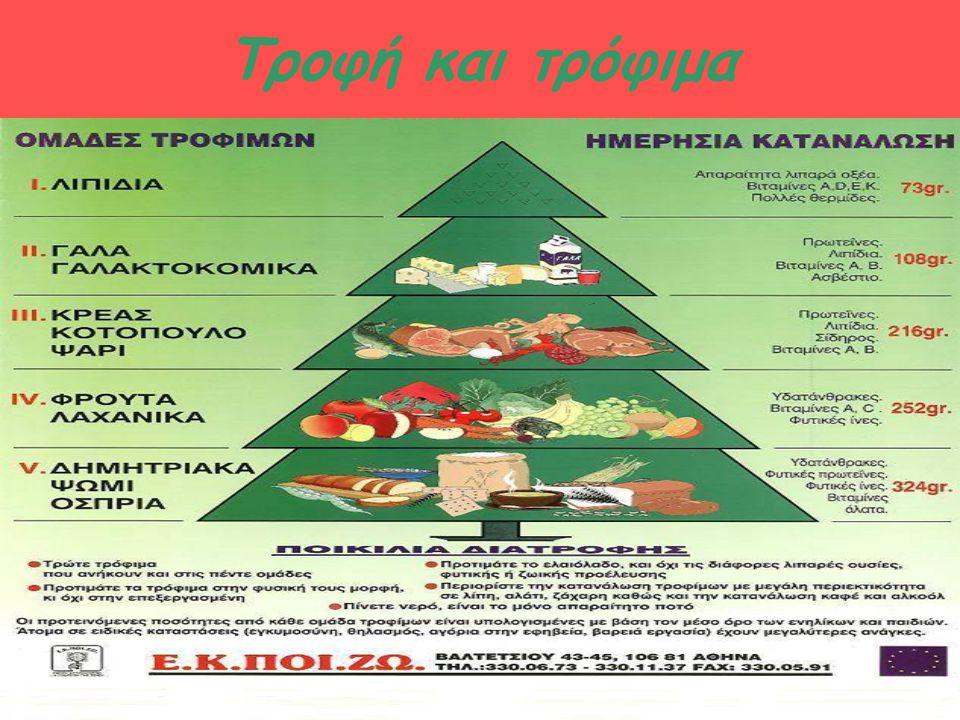Τροφή και τρόφιμα