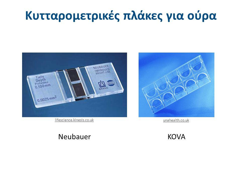 Το πλέγμα της κυτταρομετρικής πλάκας KOVA