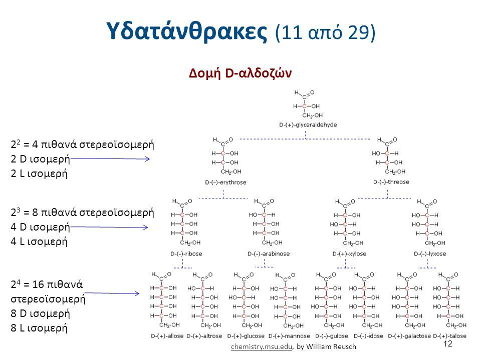 Υδατάνθρακες (11 από 29) Δομή D-αλδοζών 22 = 4 πιθανά στερεοϊσομερή