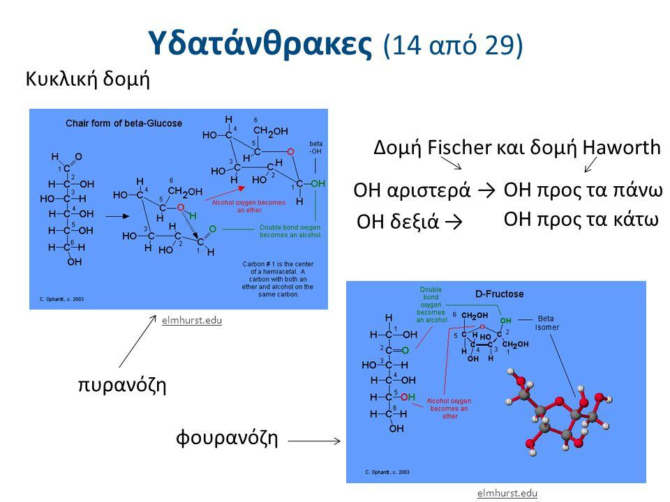Υδατάνθρακες (14 από 29) Κυκλική δομή Δομή Fischer και δομή Haworth