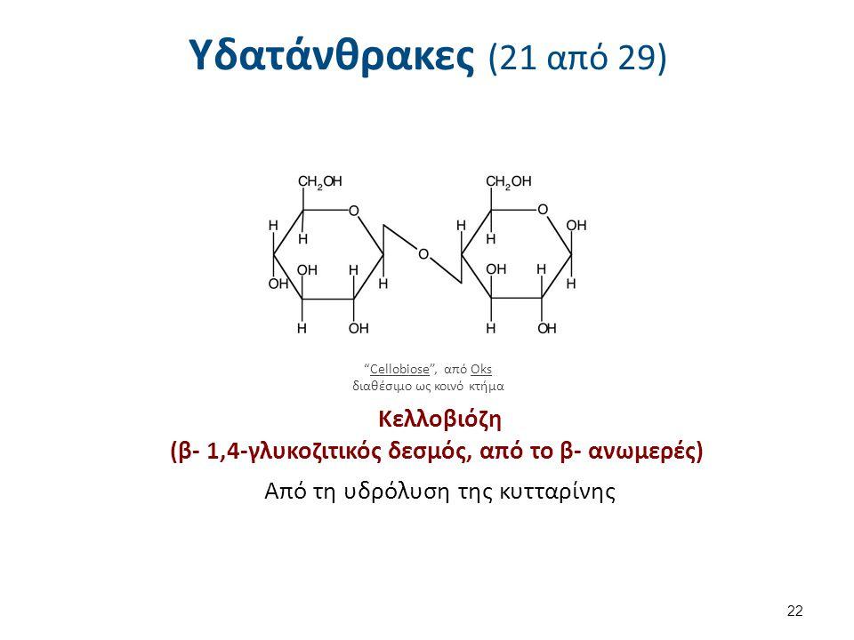 Υδατάνθρακες (21 από 29) Κελλοβιόζη