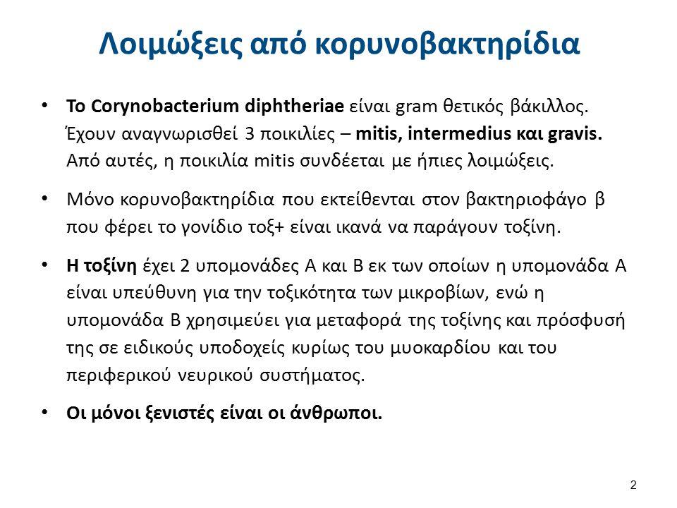 Διφθερίτιδα 1/2 Οφείλεται στο Corynobacterium diphteriae και απαντάται διεθνώς.