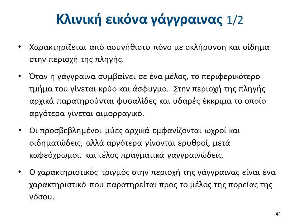 Κλινική εικόνα γάγγραινας 2/2
