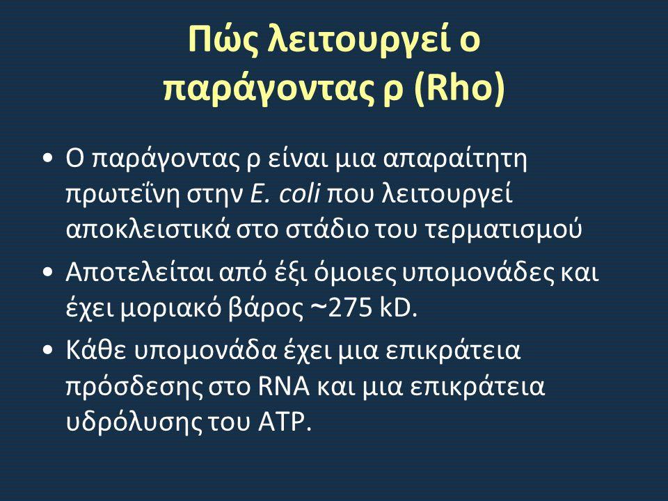 Πώς λειτουργεί ο παράγοντας ρ (Rho)