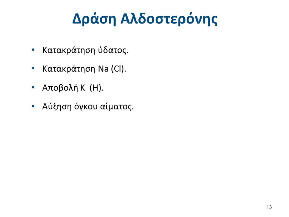 Δράση Αντιδιουρητικής Ορμόνης (ADH)