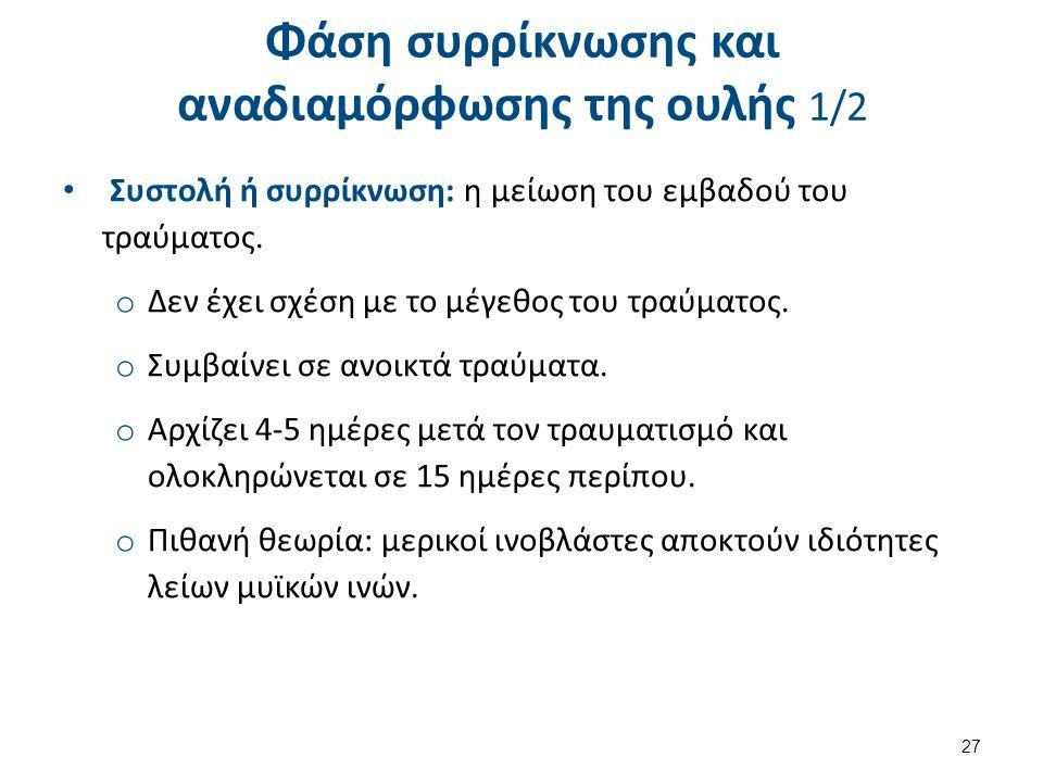 Φάση συρρίκνωσης και αναδιαμόρφωσης της ουλής 2/2