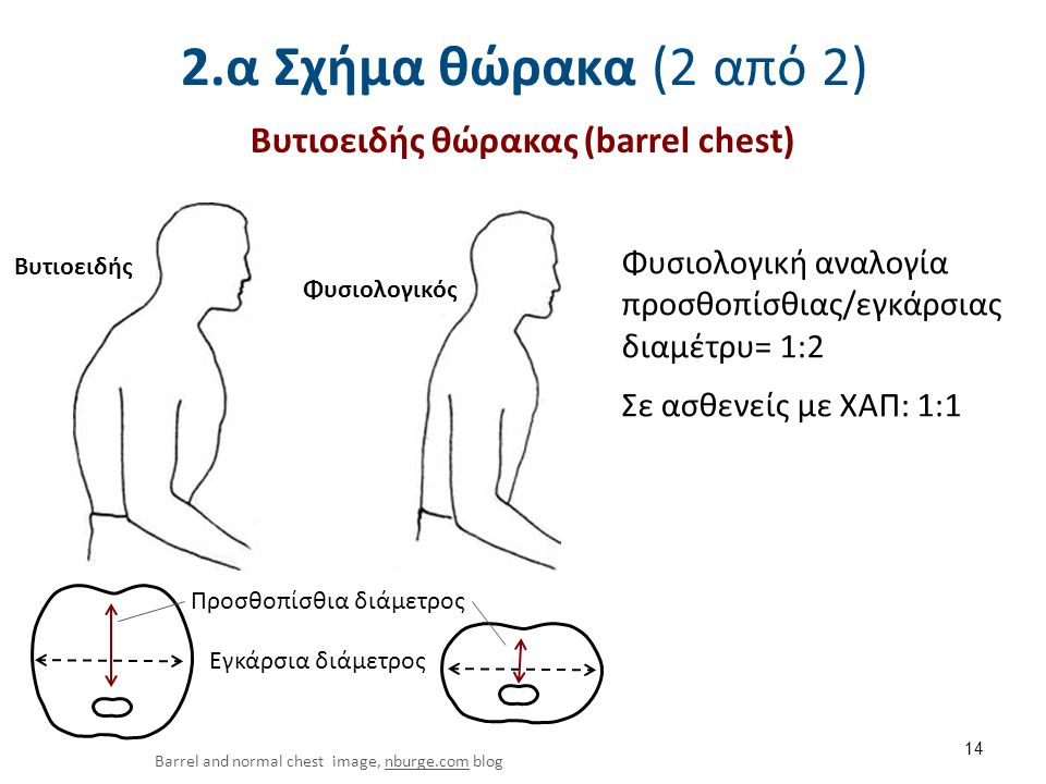 2.β Αναπνευστικό πρότυπο (1 από 5)