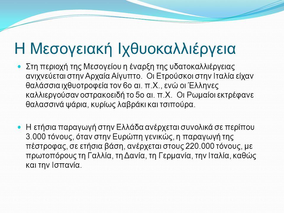 Η Μεσογειακή Ιχθυοκαλλιέργεια