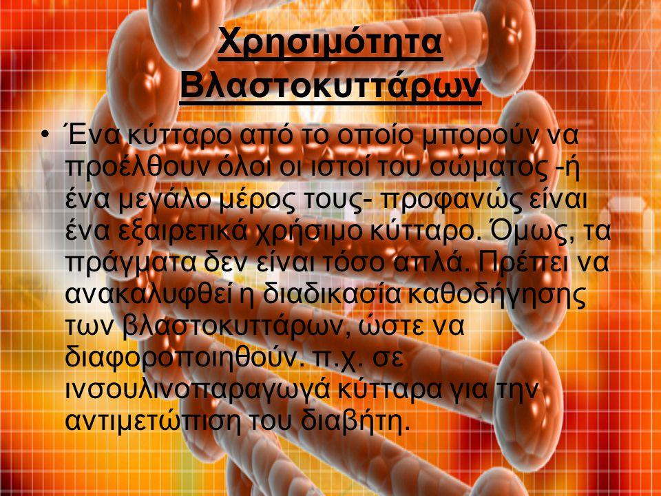 Χρησιμότητα Βλαστοκυττάρων