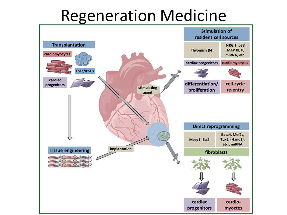 Regeneration Medicine