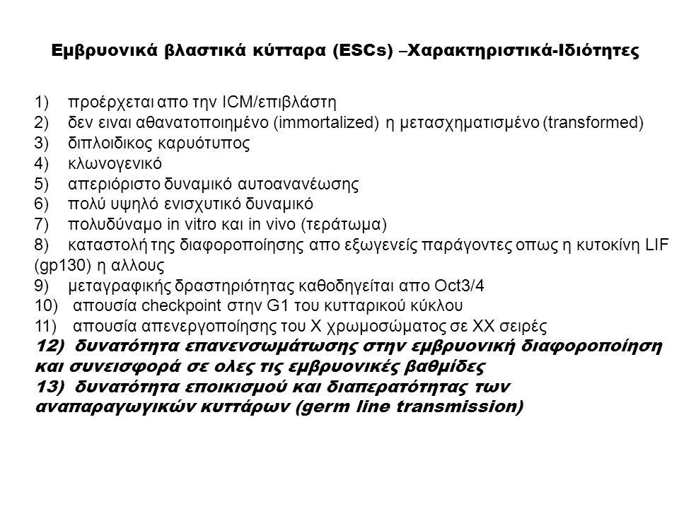 Εμβρυονικά βλαστικά κύτταρα (ESCs) –Χαρακτηριστικά-Ιδιότητες