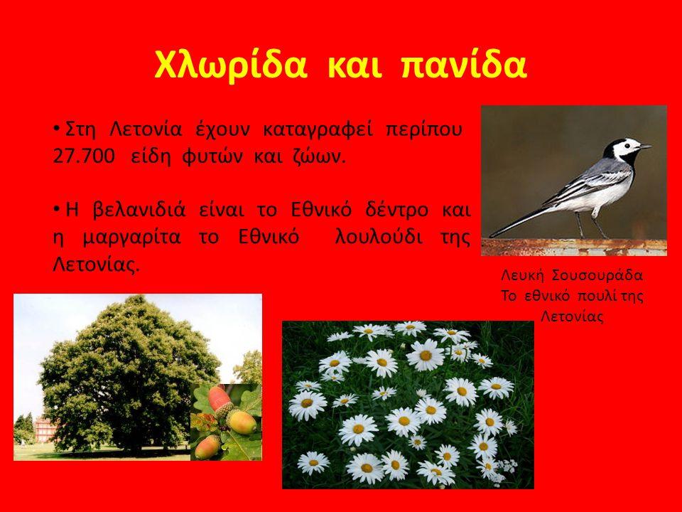 Το εθνικό πουλί της Λετονίας