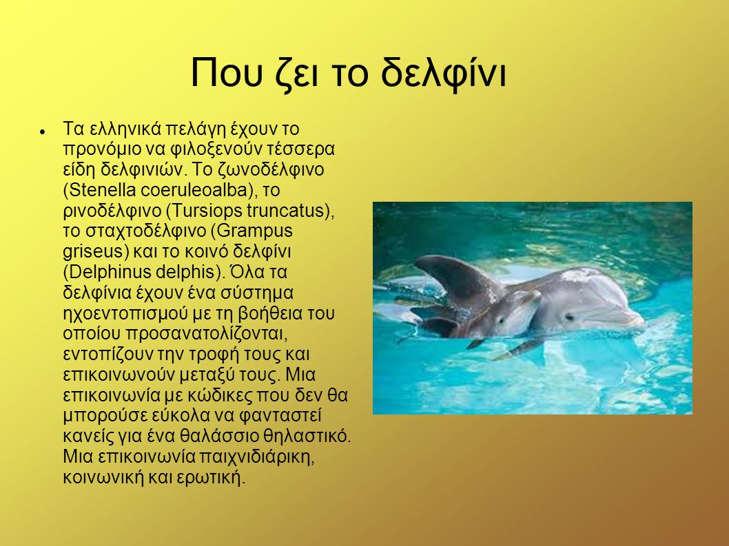 Που ζει το δελφίνι