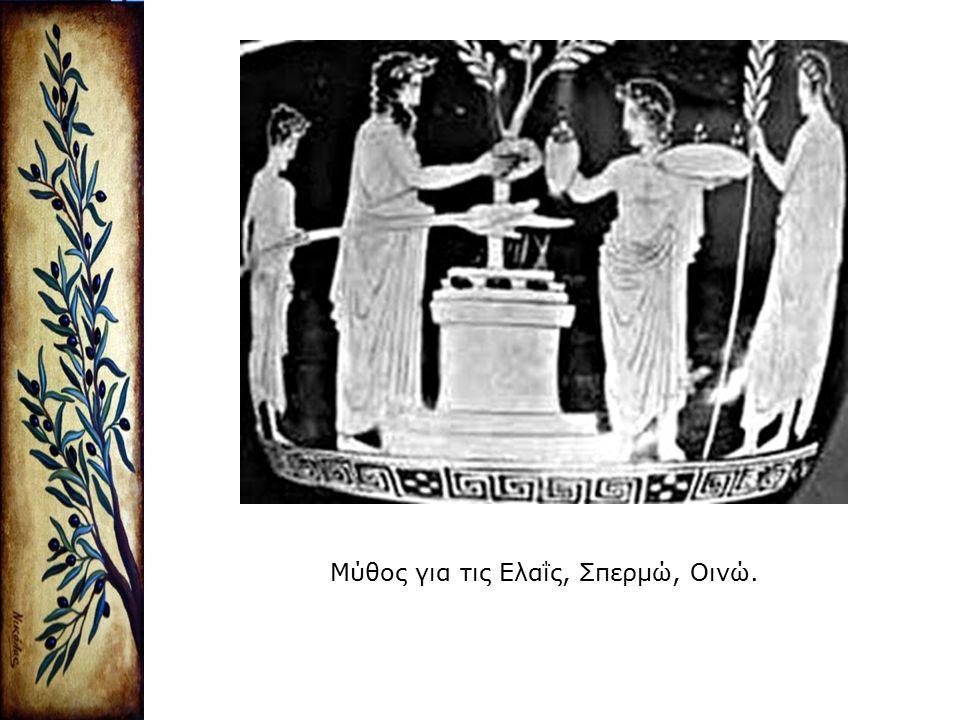 Μύθος για τις Ελαΐς, Σπερμώ, Οινώ.