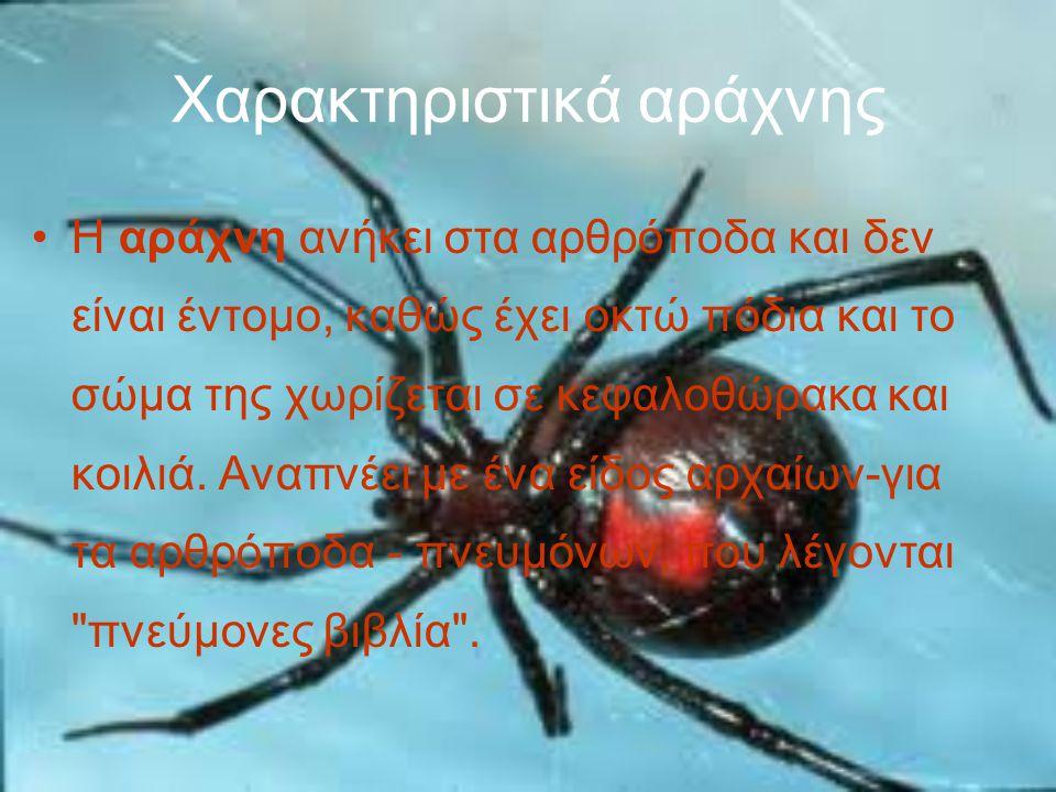 Χαρακτηριστικά αράχνης