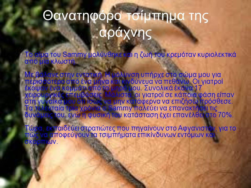 Θανατηφόρο τσίμπημα της αράχνης