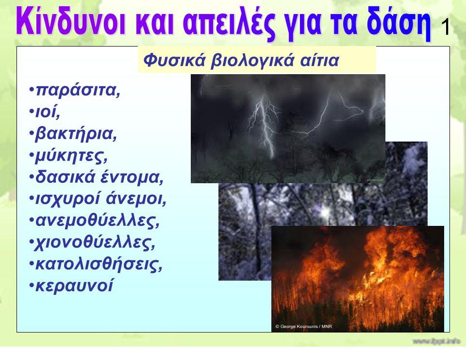 Κίνδυνοι και απειλές για τα δάση