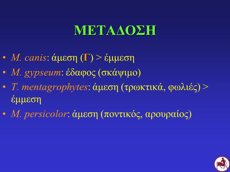 ΜΕΤΑΔΟΣΗ M. canis: άμεση (Γ) > έμμεση M. gypseum: έδαφος (σκάψιμο)